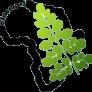logo-300x290
